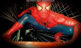 0013-Spiderman