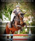 Pferd010
