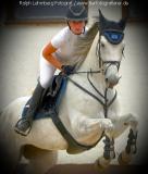 Pferd013