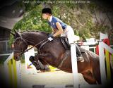 Pferd008