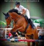 Pferd014