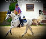 Pferd015